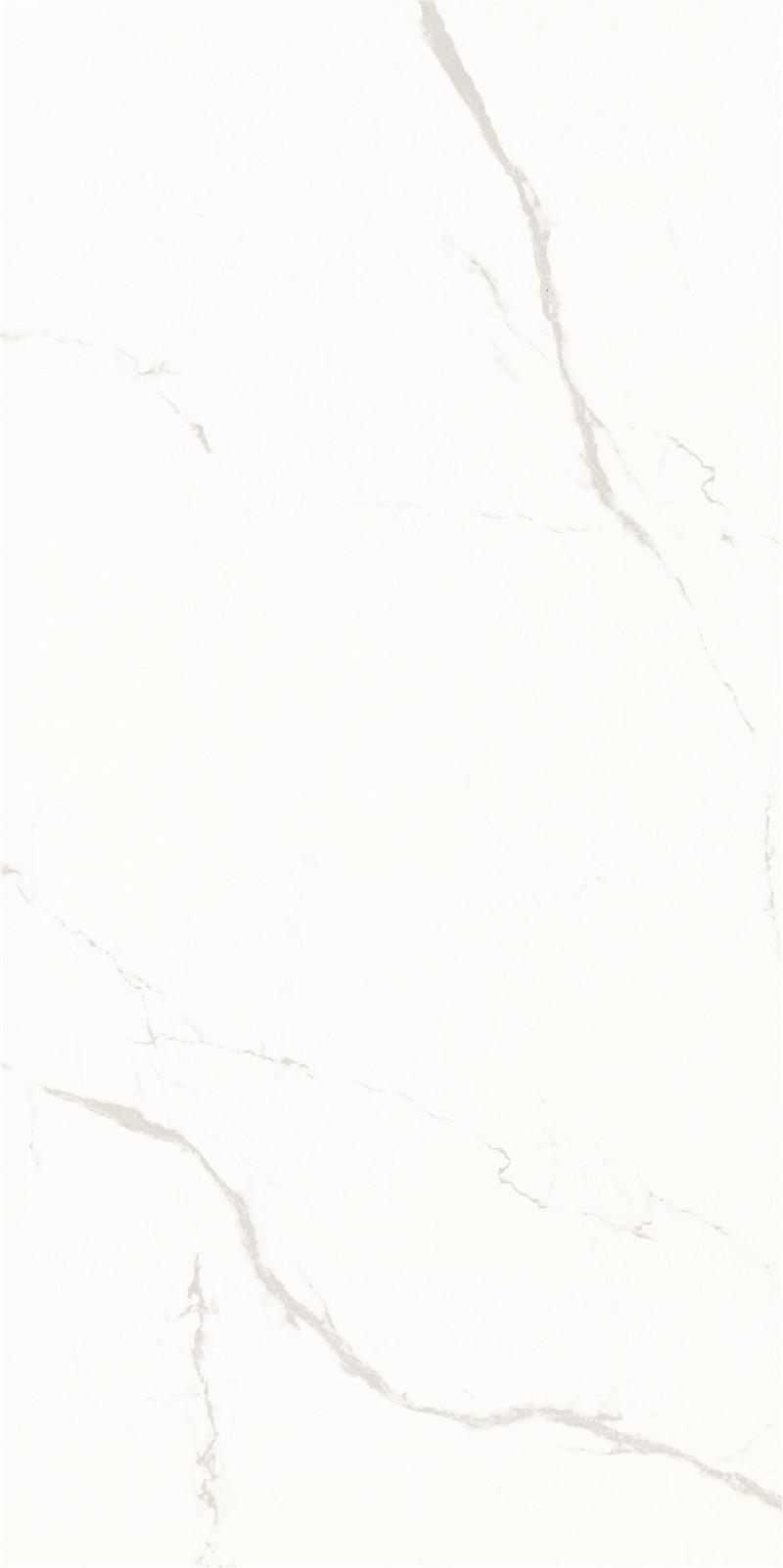 C121J371P-4
