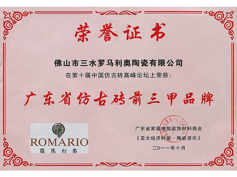 2011年罗马利奥磁砖广东省仿古砖前三甲品牌